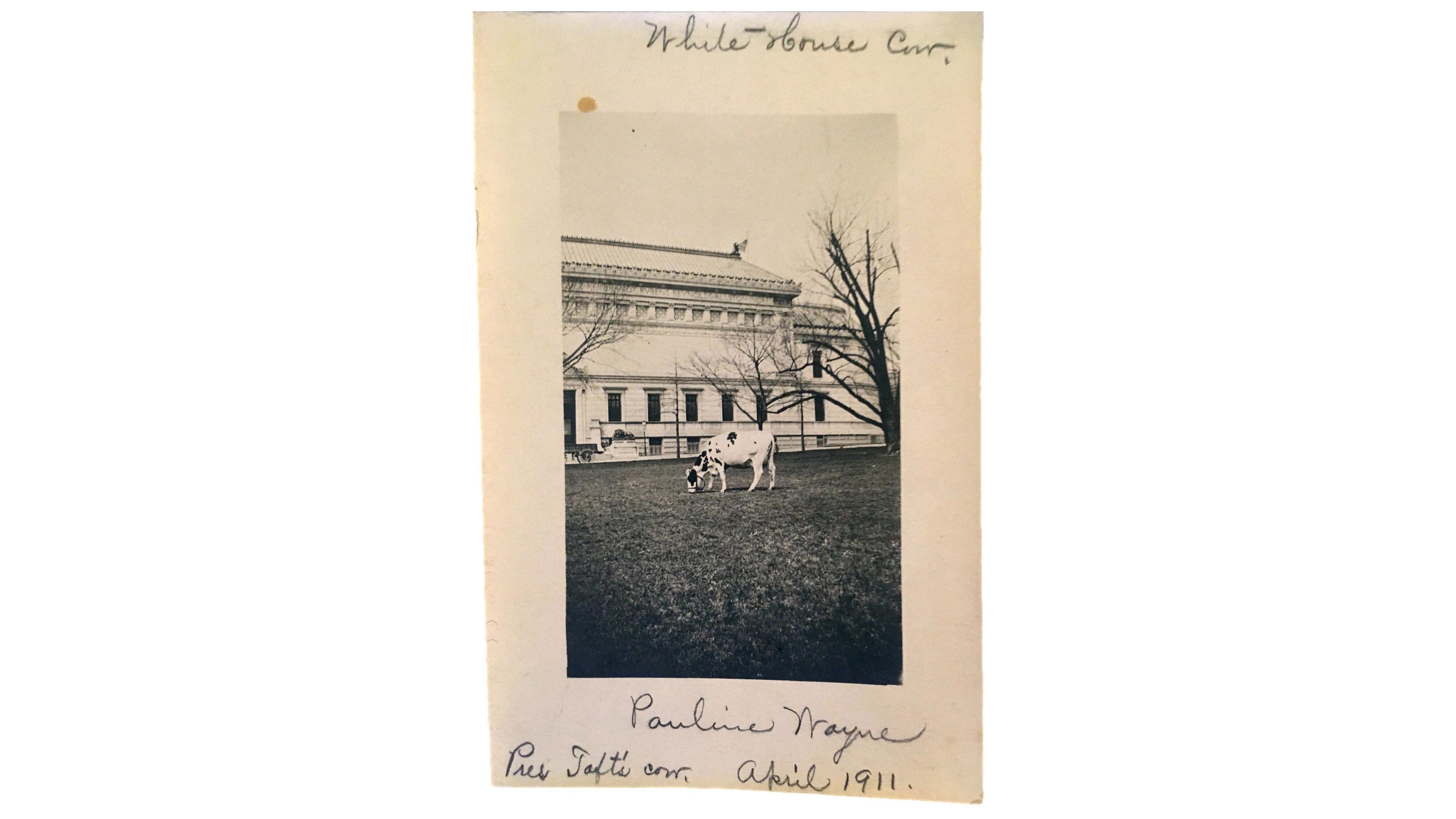 Greetings From Washington The George Washington University Museum