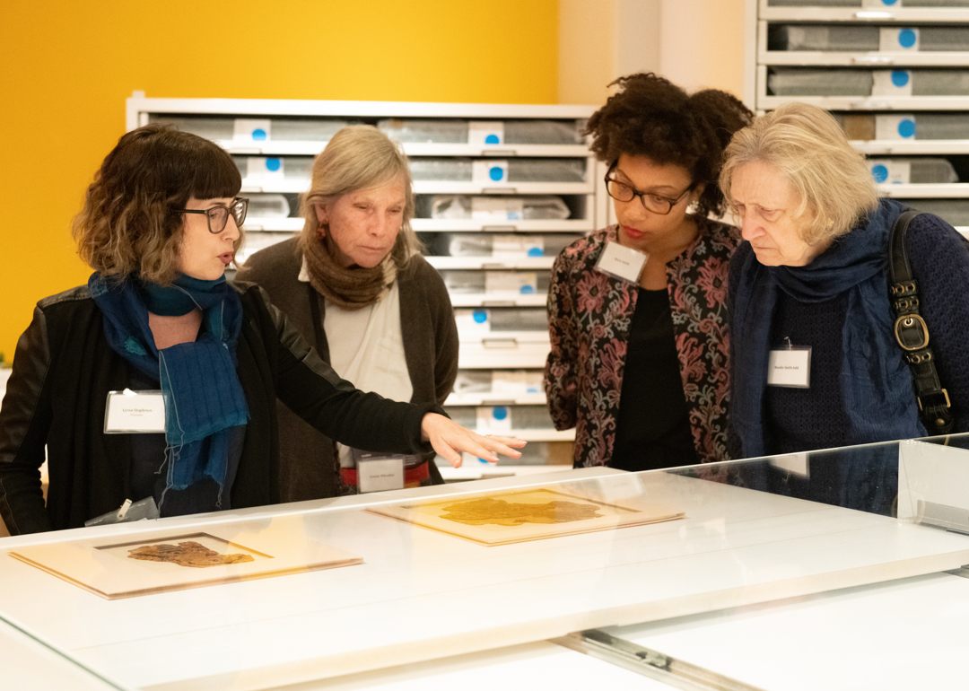 4 women looking at textiles under glass