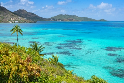 Beaches full of vegetation overlook clear, blue waters.